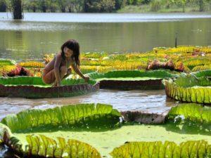 AMAZONE-SE!!!
